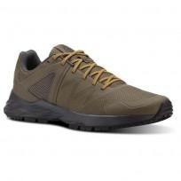 Reebok Astroride Trail Walking Shoes Mens Trek Grey/Coal/Ash Grey/Collegiate Gold CN4579