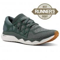 Reebok Floatride Run Running Shoes Mens Chalk Green/Tin Grey/White/Gum CN2582