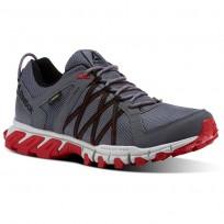 Reebok Trailgrip Walking Shoes Mens Alloy/Skull Grey/Primal Red/Black CN0831
